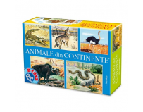 Animale din continente, D-Toys.