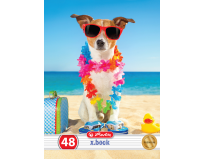 Caiet A5 48 file dictando,motiv Cool Dog Premium, Herlitz