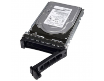 Dell 1TB 7.2K RPM SATA 6Gbps 512n 3.5in Cabled Hard Drive CK   - with server only