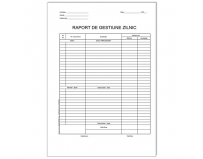 Raport de gestiune zilnic, offset, A4, 55 g/mp, 100 file